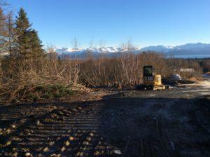 Cutting Alders, Clearing, Grubbing
