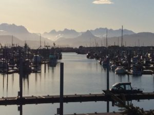Homer Harbor March 24th 2018