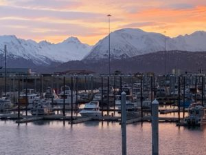11 miles to Homer Harbor from RV Sites in Homer