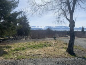 Spring at RV Sites in Homer….