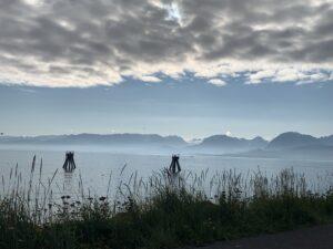 Beautiful Morning in the Bay…..